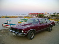 1975 Chevrolet Nova, My everyday runner, 355cui/350HP, good street engine, exterior