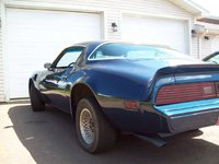 1981 Pontiac Firebird Picture Gallery