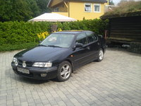 Picture of 1997 Nissan Primera, exterior, gallery_worthy