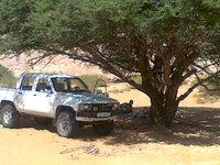 1988 Toyota Hilux, in sahara libya, gallery_worthy