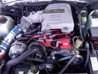1994 Ford Mustang SVT Cobra 2 Dr STD Coupe picture, engine