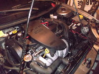 1998 Dodge Neon 2 Dr Competition Coupe picture, engine