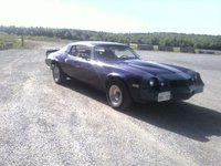 1980 Chevrolet Camaro, A Picture/Video Message! You have received a New Message. http://mypictures.bell.ca/share.do?invite=nEor482pm55rGkY8h89Q, exterior, gallery_worthy