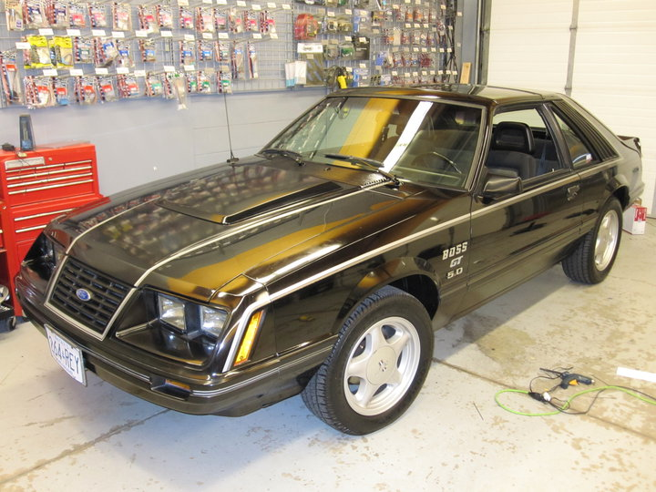1983 Ford Mustang Overview