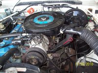 Picture of 1979 Dodge Aspen, engine
