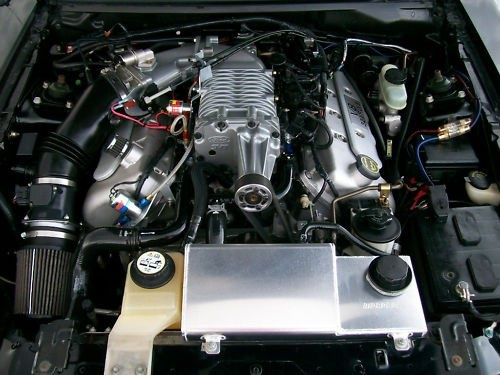 Picture of 2003 Ford Mustang SVT Cobra Supercharged Coupe, engine, gallery_worthy