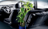 2011 Honda Fit, Back Seat View. , interior, manufacturer
