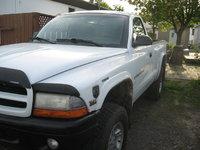 Picture of 1998 Dodge Dakota 2 Dr Sport 4WD Standard Cab SB, exterior