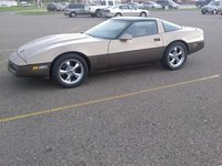 1984 Chevrolet Corvette Coupe picture, exterior