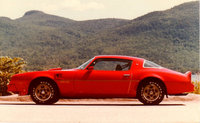 1976 Pontiac Trans Am Picture Gallery