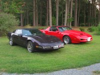 1994 Chevrolet Corvette Base, Im startin' a ranch. Already got about 700 horses and I'm lookin for more..., exterior