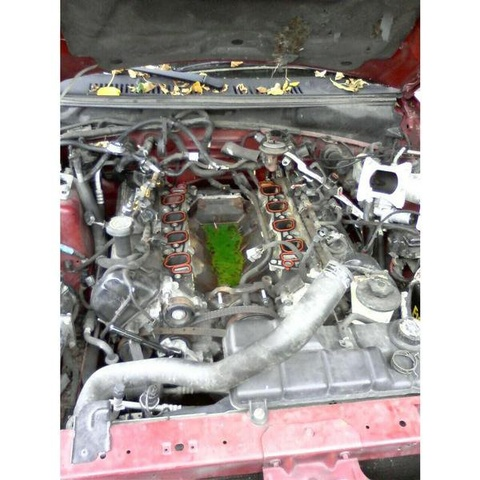 2000 Ford Mustang GT Coupe RWD, Intake manifold removed, cracked coolant crossover was the problem., engine, gallery_worthy