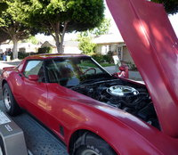 Picture of 1981 Chevrolet Corvette Coupe RWD, exterior, engine, gallery_worthy