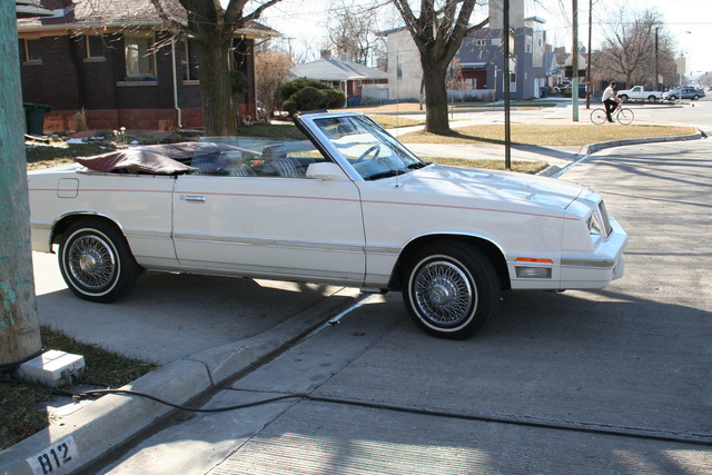 Picture of 1982 Chrysler Le Baron