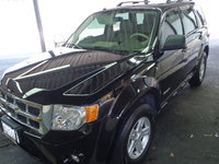 Picture of 2008 Ford Escape Hybrid Base, exterior