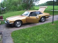 1982 Jaguar XJ-S, Sleeping Beauty - Wake up Call .... SPRING 2011