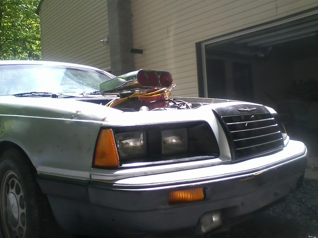 Picture of 1986 Ford Thunderbird