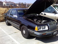 1984 Ford Thunderbird picture, engine, exterior