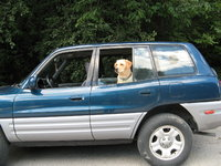 1999 Toyota RAV4 4 Door, my ride and my pup, exterior