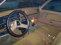 1980 Chevrolet El Camino picture, interior