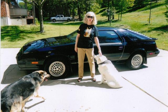 Picture of 1985 Dodge Daytona