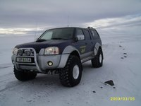 Picture of 2003 Nissan Navara, exterior, gallery_worthy