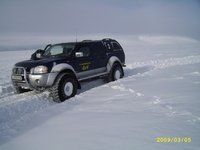 Picture of 2003 Nissan Navara, exterior
