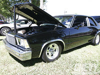 Picture of 1978 Chevrolet Malibu, exterior, engine