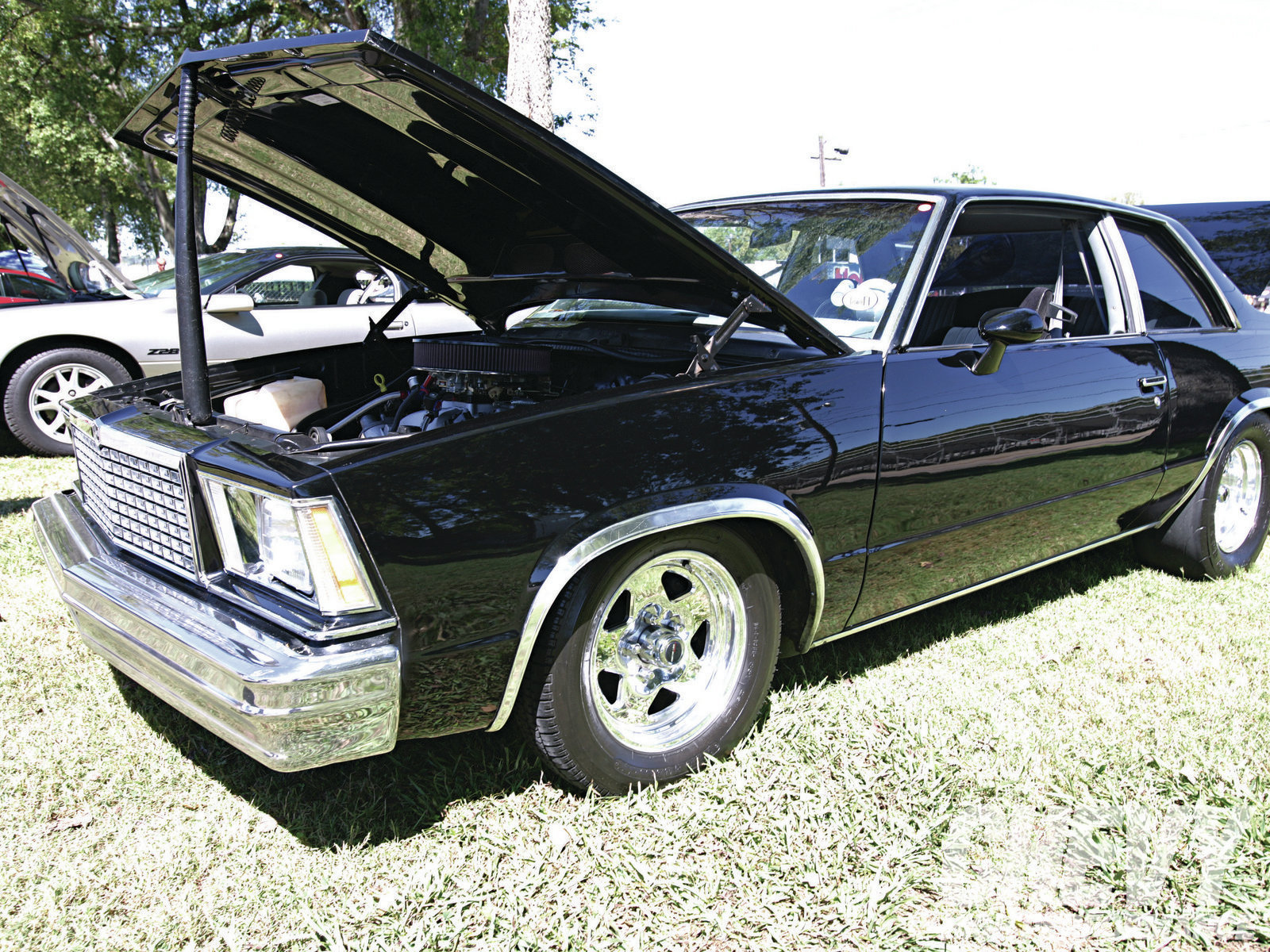 1978 Chevrolet Malibu picture, engine, exterior