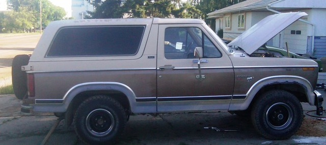 Picture of 1981 Ford Bronco