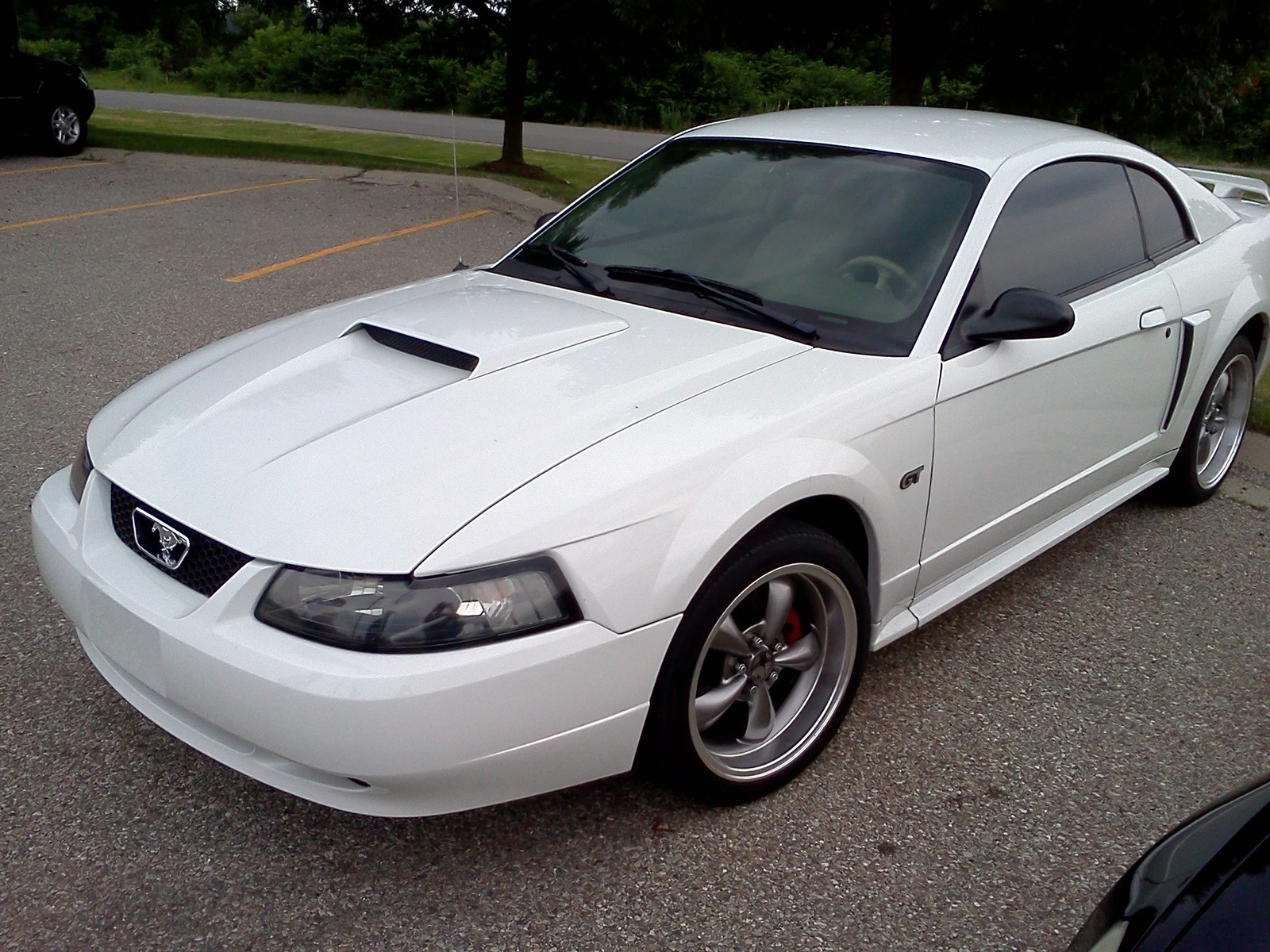... 2003 ford mustang gt picture view garage chris owns this ford mustang