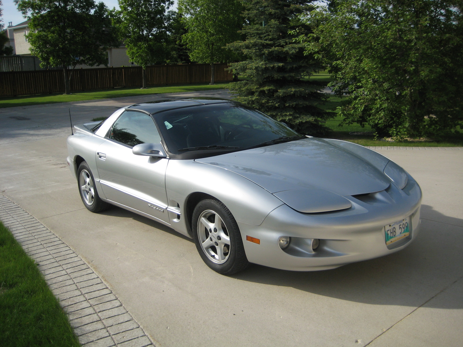 2002 Pontiac Firebird Base picture, exterior