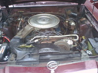 Picture of 1980 Mercury Cougar, engine, gallery_worthy