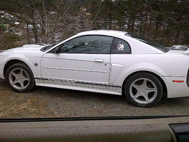 Picture of 2002 Ford Mustang