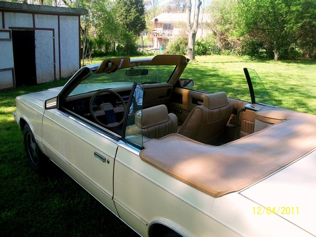 Picture of 1986 Dodge 600