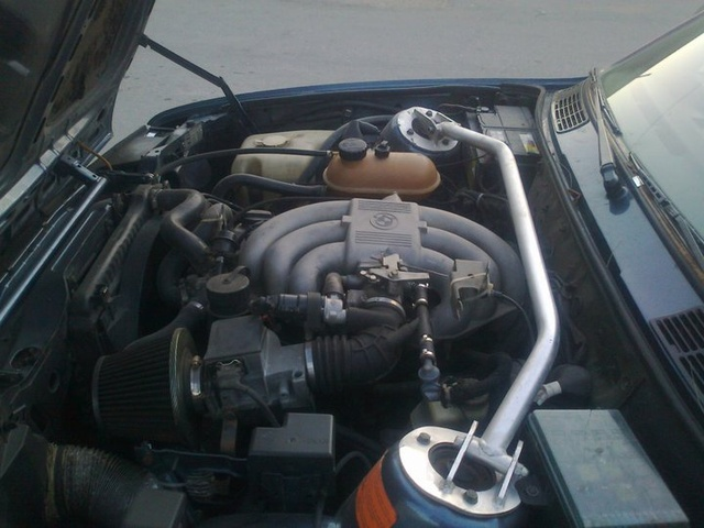 Picture of 1985 BMW 3 Series 325i, engine, gallery_worthy