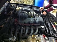 Picture of 1997 Ford EL Falcon, engine