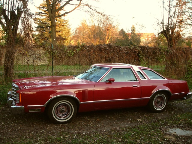 Picture of 1979 Ford Thunderbird, exterior, gallery_worthy
