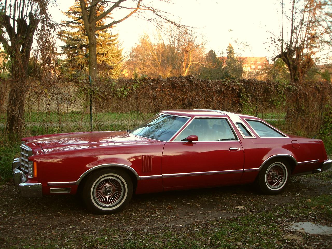 1979 ford thunderbird pictures cargurus for Garage ford romans