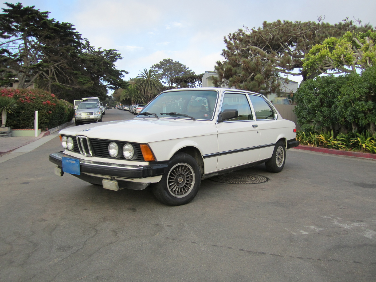 1980 Bmw 3 Series Pictures Cargurus