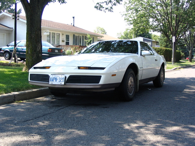 Picture of 1983 Pontiac Firebird