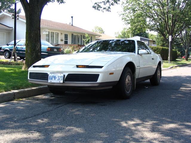 Picture of 1983 Pontiac Firebird