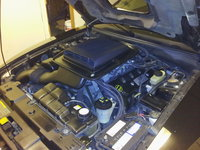 2003 Ford Mustang Mach 1 picture, engine