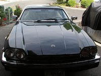 Picture of 1983 Jaguar XJ-S, exterior