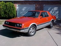 1981 Dodge Challenger Picture Gallery