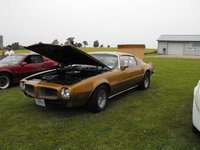 Picture of 1972 Pontiac Firebird, exterior, engine
