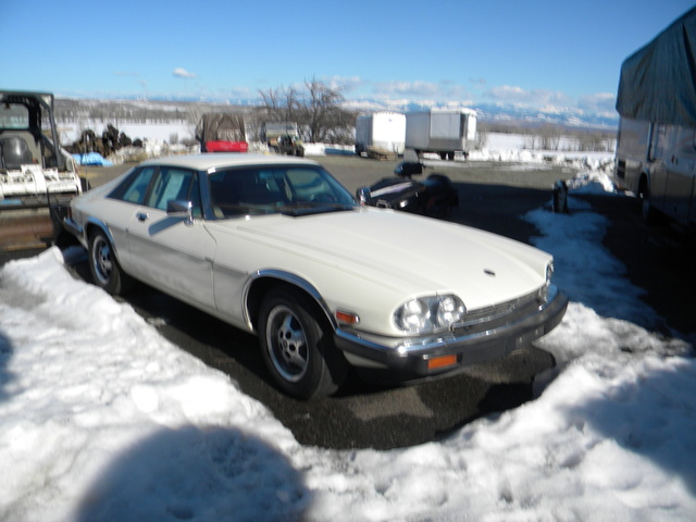 Picture of 1988 Jaguar XJ-S, exterior, gallery_worthy