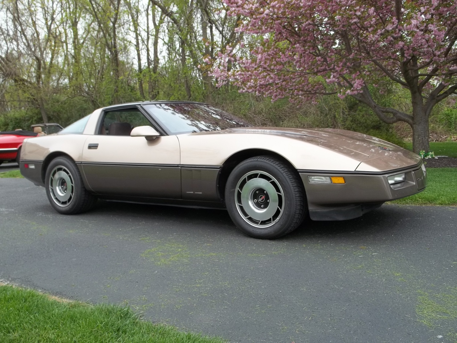 1984 1996 chevrolet corvette c4 dark cars wallpapers. Black Bedroom Furniture Sets. Home Design Ideas