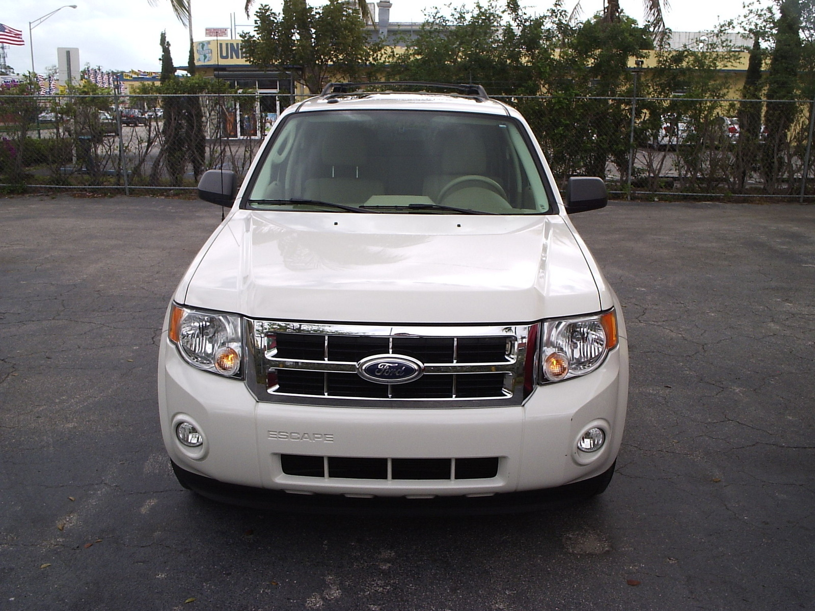 Picture of 2010 Ford Escape XLT 4WD