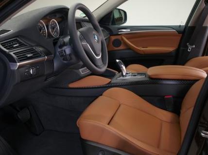 2013 BMW X6, Interior Driver View, interior